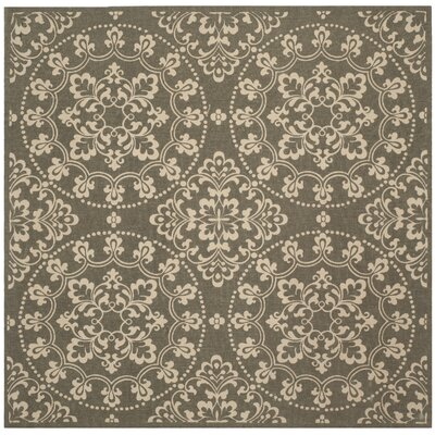 Raymond Hand-Woven Area Rug Rug Size: Square 6 x 6