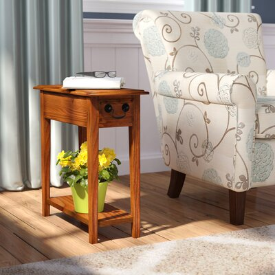 Apple Valley End Table With Storage Color: Medium Oak