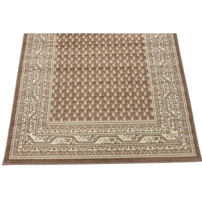 Michael Brown Area Rug Rug Size: Runner 29 x 910