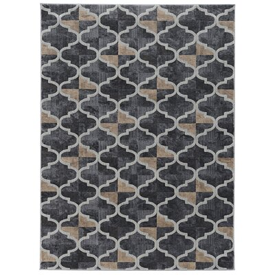 Norwich Gray Area Rug Rug Size: Rectangle 53 x 73