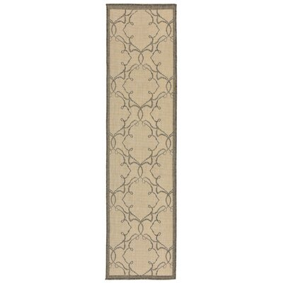 Brasstown Delicate Scroll Beige Indoor/Outdoor Area Rug Rug Size: Runner 111 x 76