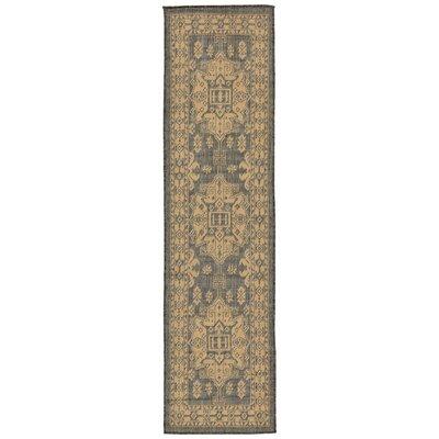 Brasstown Kilim Slate/Gray Indoor/Outdoor Area Rug Rug Size: Runner 111 x 76