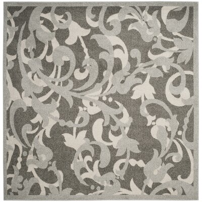 Neil Gray/Light Gray Indoor/Outdoor Area Rug Rug Size: Square 7 x 7
