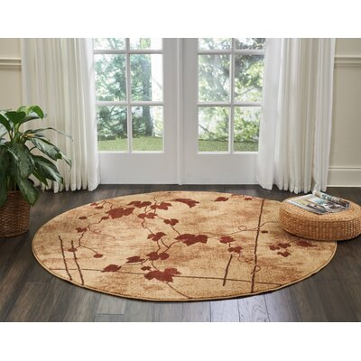 Cahill Latte Area Rug Rug Size: Rectangle 2 x 29
