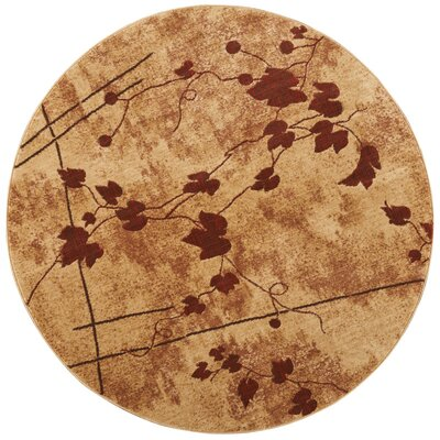 Cahill Latte Area Rug Rug Size: Round 56