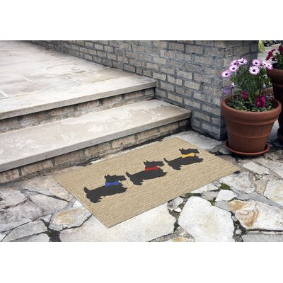 Allgood Hand-Tufted Neutral Indoor/Outdoor Area Rug Rug Size: 18 x 26