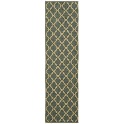 Bunyard Moroccan Trellis Design Sage Green Area Rug Rug Size: Runner 110 x 7