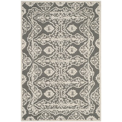 Amundson Hand-Tufted Gray/Ivory Area Rug Rug Size: Rectangle 4' x 6'