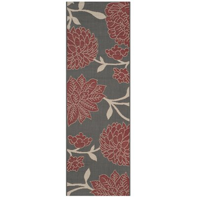 Octavius Anthracite / Beige Indoor / Outdoor Area Rug Rug Size: Runner 23 x 67