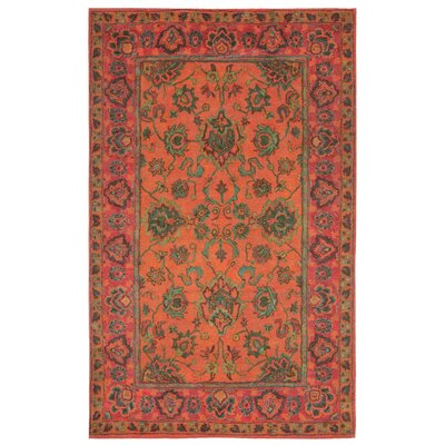 Irwin Agra Orange Area Rug Rug Size: 48 x 76