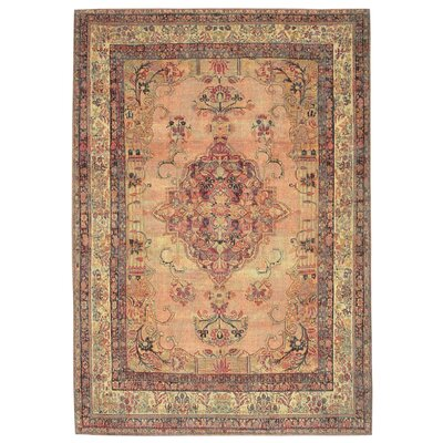 Astoria Kermin Blush Area Rug Rug Size: 33 x 48