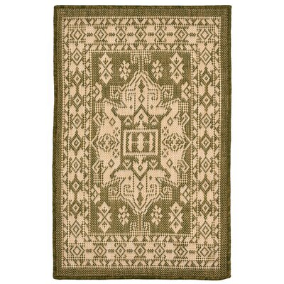 Brasstown Green Indoor/Outdoor Area Rug Rug Size: Rectangle 111 x 211