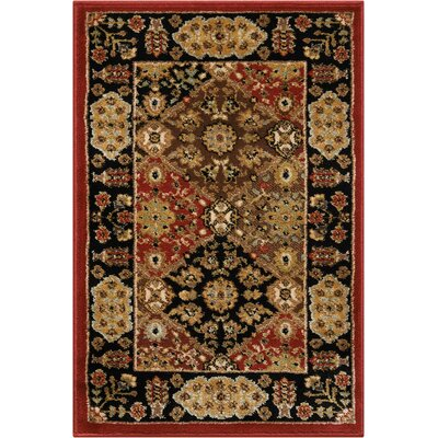 Ravens Brown/Black Area Rug Rug Size: Rectangle 67 x 96