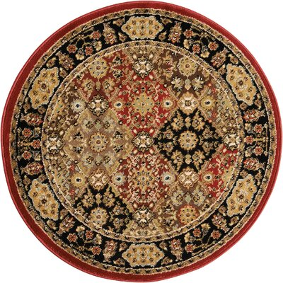 Ravens Brown/Black Area Rug Rug Size: Round 34