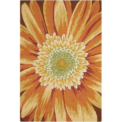 York Hand-Hooked Yellow Area Rug Rug Size: Rectangle 5 x 76