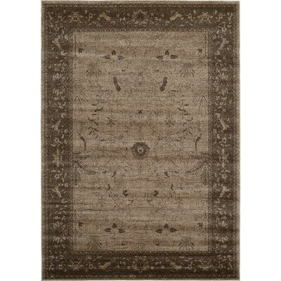 Shailene Brown Area Rug Rug Size: Rectangle 7 x 10