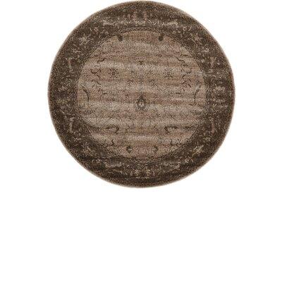 Shailene Brown Area Rug Rug Size: Round 6