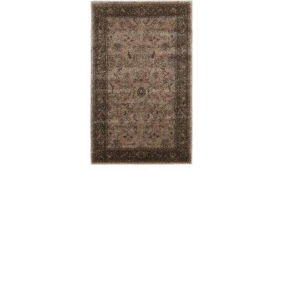 Shailene Brown Area Rug Rug Size: Rectangle 33 x 53