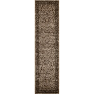 Shailene Brown Area Rug Rug Size: Runner 27 x 10