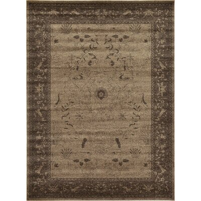 Shailene Brown Area Rug Rug Size: Rectangle 8 x 11