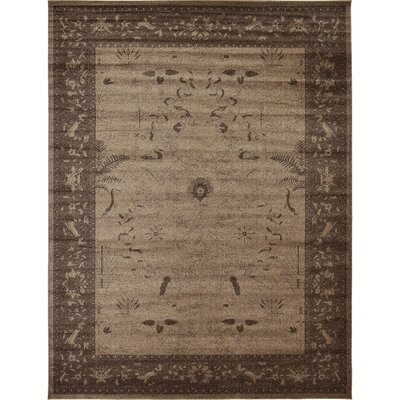Shailene Brown Area Rug Rug Size: Rectangle 122 x 16