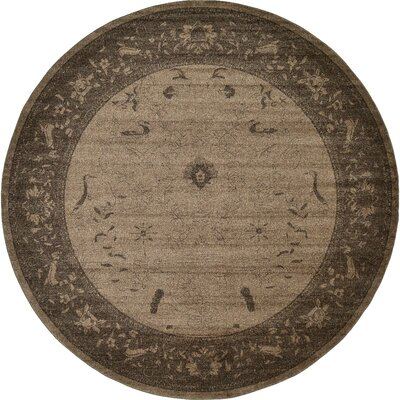 Attleborough Brown Area Rug Rug Size: Round 6