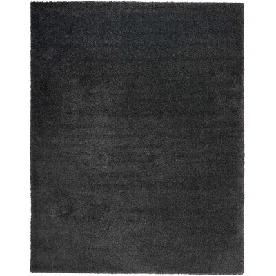 Parrish Dark Gray Area Rug Rug Size: Rectangle 9 x 12