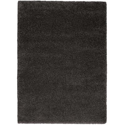 Parrish Dark Gray Area Rug Rug Size: Rectangle 53 x 73