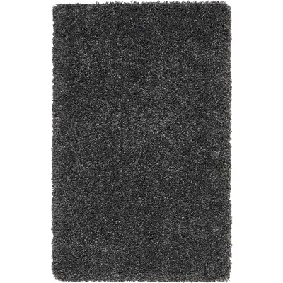 Parrish Dark Gray Area Rug Rug Size: Rectangle 2'6