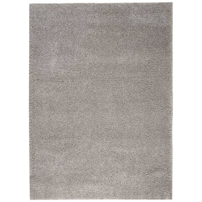 Parrish Gray Area Rug Rug Size: Rectangle 53 x 73