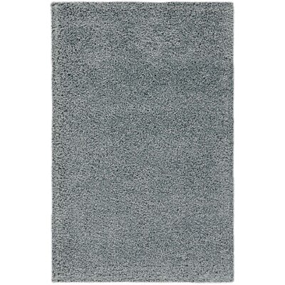 Parrish Silver Area Rug Rug Size: Rectangle 26 x 4