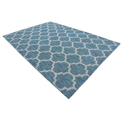 Enola Teal/Grey Outdoor Area Rug Rug Size: Rectangle 7 x 10
