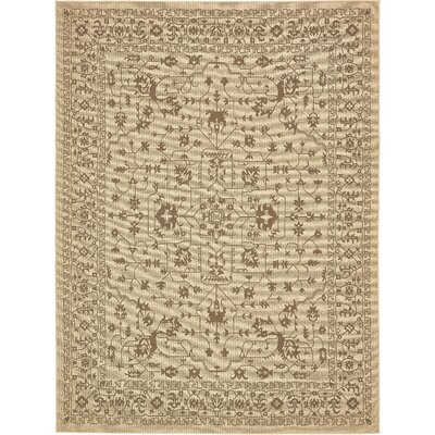 Apache Beige Outdoor Area Rug Rug Size: Rectangle 8 x 114