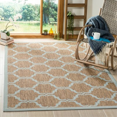Octavius Brown/Aqua Indoor/Outdoor Area Rug Rug Size: Rectangle 4 x 6