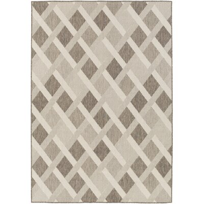 Westbury Beige Indoor/Outdoor Area Rug Rug Size: Rectangle 53 x 76