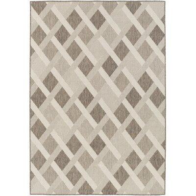 Westbury Beige Indoor/Outdoor Area Rug Rug Size: 76 x 109