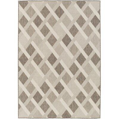 Westbury Beige Indoor/Outdoor Area Rug Rug Size: 810 x 129