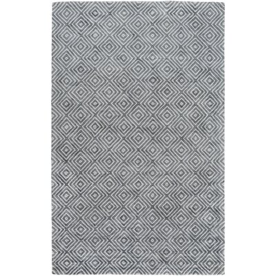 Warmley Hand Woven Gray Area Rug Rug Size: Rectangle 2' x 3'