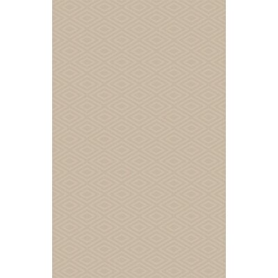 Arcuri Hand-Woven Beige Area Rug Rug Size: 5 x 76