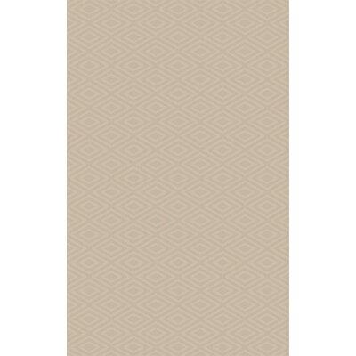 Arcuri Hand-Woven Beige Area Rug Rug Size: 4 x 6