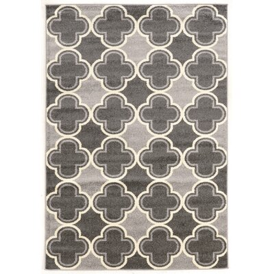 Park Row Gray Area Rug Rug Size: Rectangle 5 x 7
