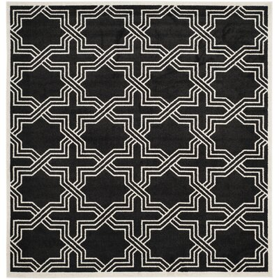 Waverly Place Black/Ivory Indoor/Outdoor Area Rug Rug Size: Square 7