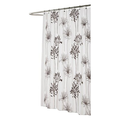 Knopf Shower Curtain Color: Ivory and Brown