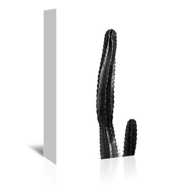 Beckett Large Cactus Photographic Print on Wrapped Canvas Size: 14