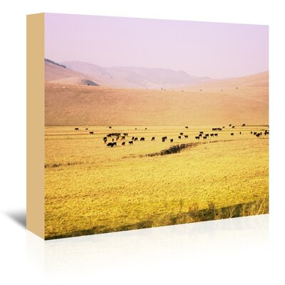 Coastal Farm Photographic Print on Wrapped Canvas