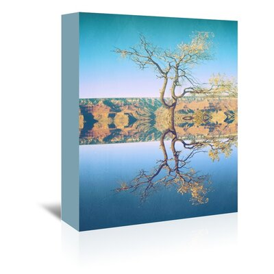 Canyon Photographic Print on Wrapped Canvas Size: 14