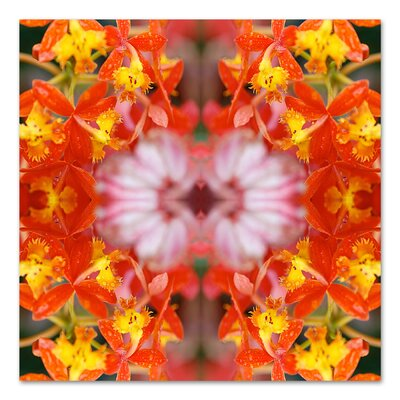 Yellow Orchids by Rose Anne Colavito Graphic Art Size: 18