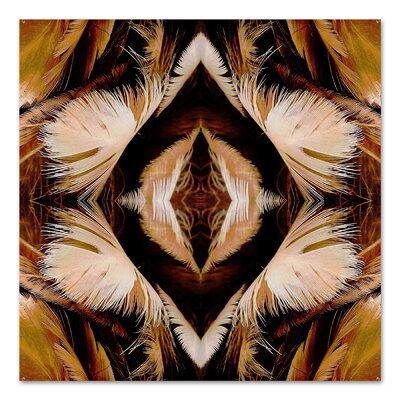 Brown Feathers by Rose Anne Colavito Graphic Art Size: 18