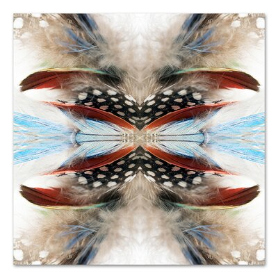 Indian Feathers by Rose Anne Colavito Graphic Art Size: 18