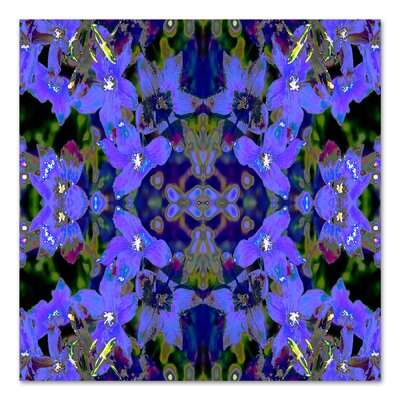 Delphinium X2 by Rose Anne Colavito Graphic Art